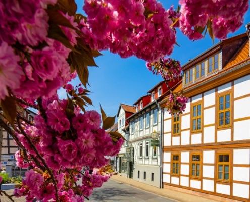 Willkommen in Bad Gandersheim